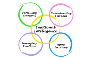 Five rings of emotion graphic